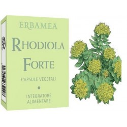 RHODIOLA FORTE 24CPS
